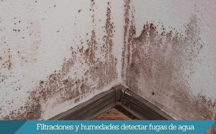 Detectar fugas de agua Bilbao humedades y filtraciones Isurbide