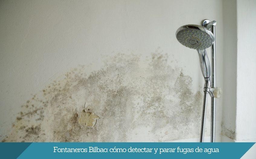 Fontaneros Bilbao como detectar y parar fugas de agua isurbide